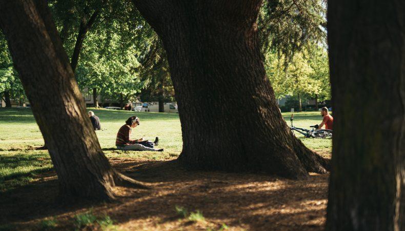 mount pleasant east park